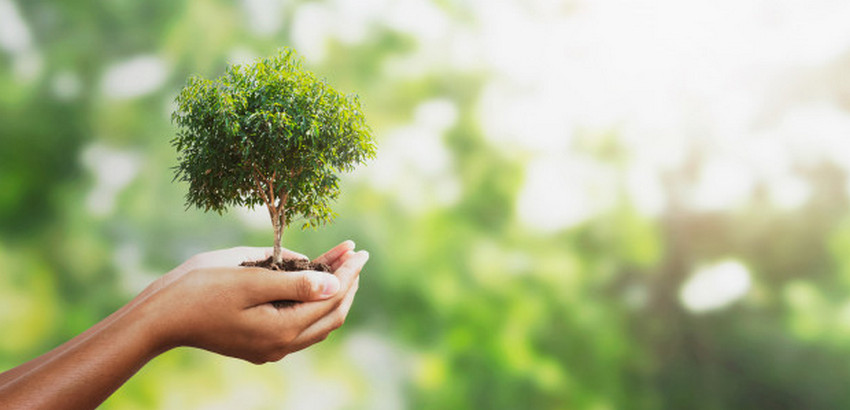 Día Mundial del Medio Ambiente y el Compromiso Empresarial Hoy es un día especial, es el día Mundial del Medio Ambiente. Es el día en que se reconoce al medio ambiente, que gracias a este podemos disfrutar de lo que nos brinda.